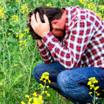 Por que tantos fracassos rumo à santidade?
