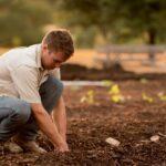 Dia do agricultor é celebrado em 28 de julho